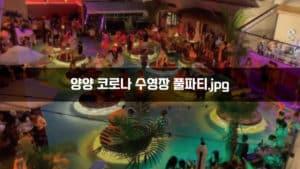 양양 코로나 수영장 풀파티