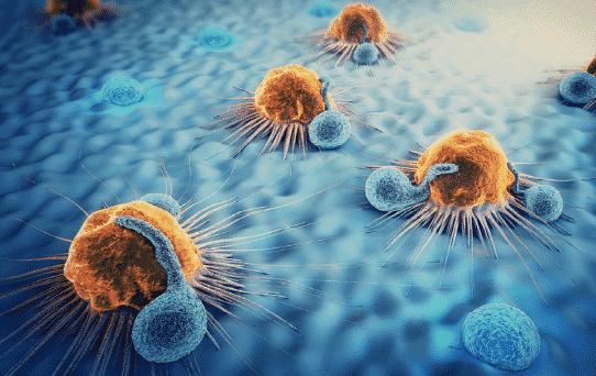 가족력이 높은 주요 5대 암